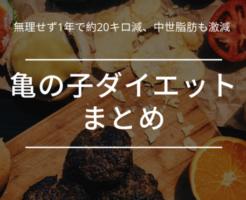 亀の子ダイエット